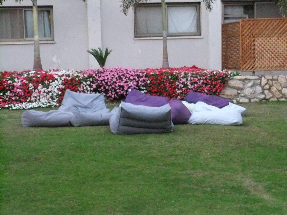 Garden Hotel Oasis Dead Sea