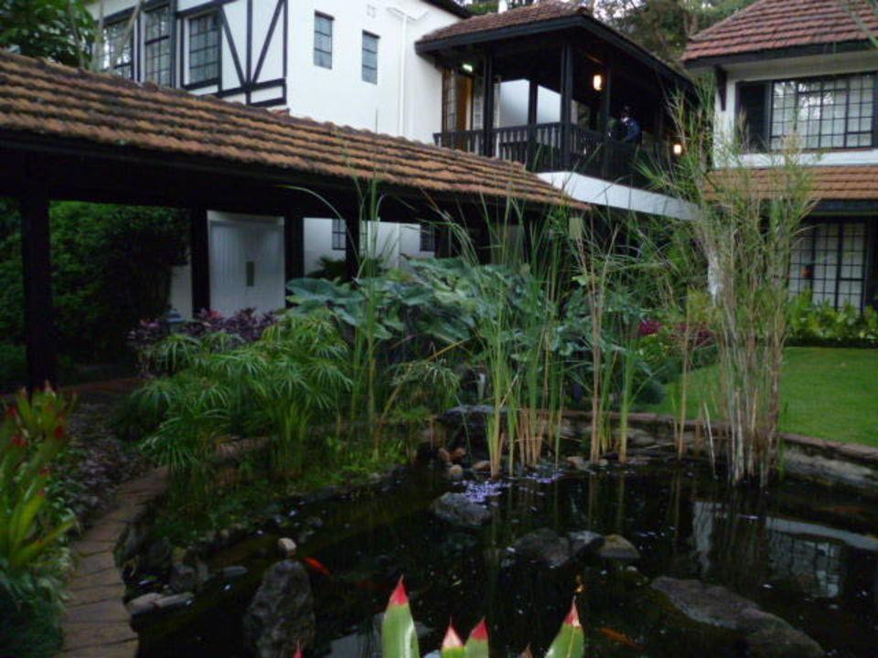 Pool mit Frühstückssaal Hotel Southern Sun Mayfair