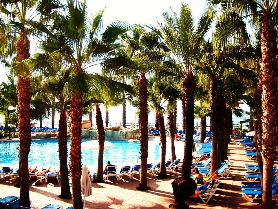 Wunderschöne Vegetation der Hotelanlage Hotel Marbella Playa