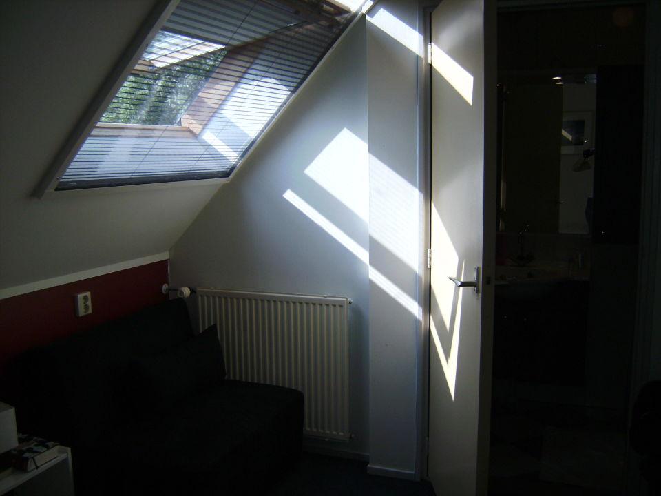Dachschr Ge Fenster Rollo Zf83 Hitoiro