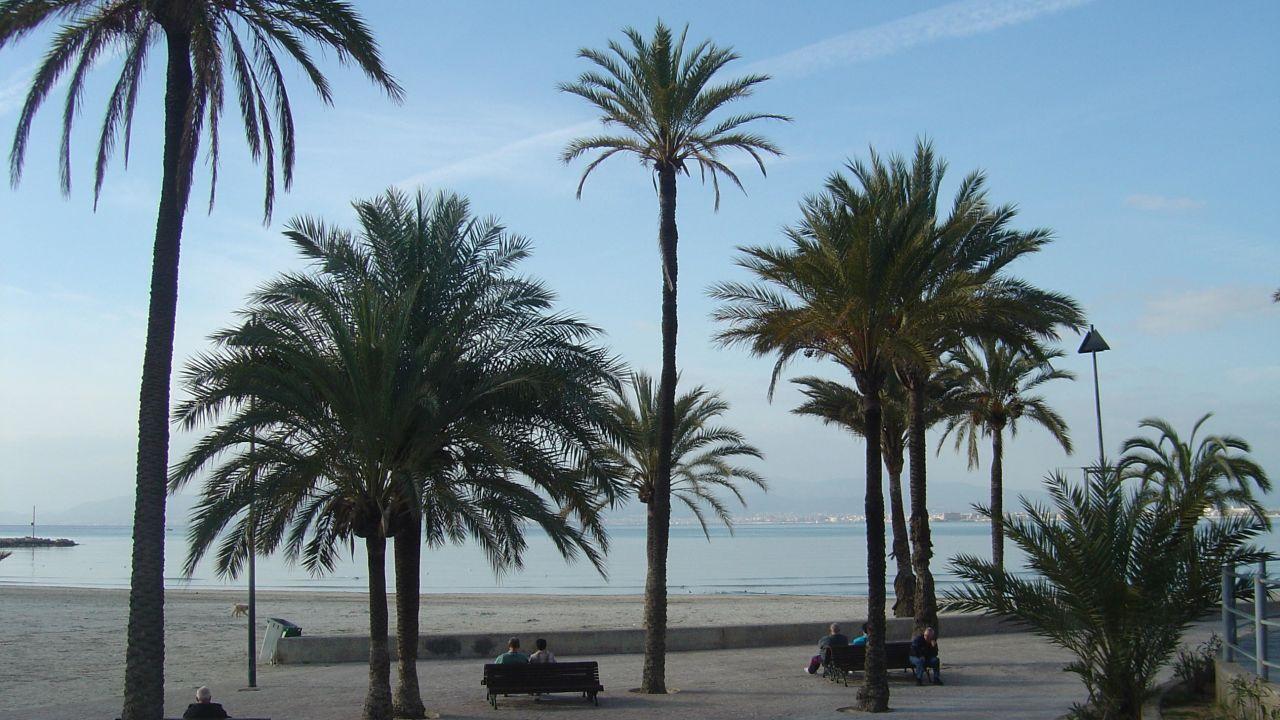Hotel Mediodia Mallorca Holidaycheck