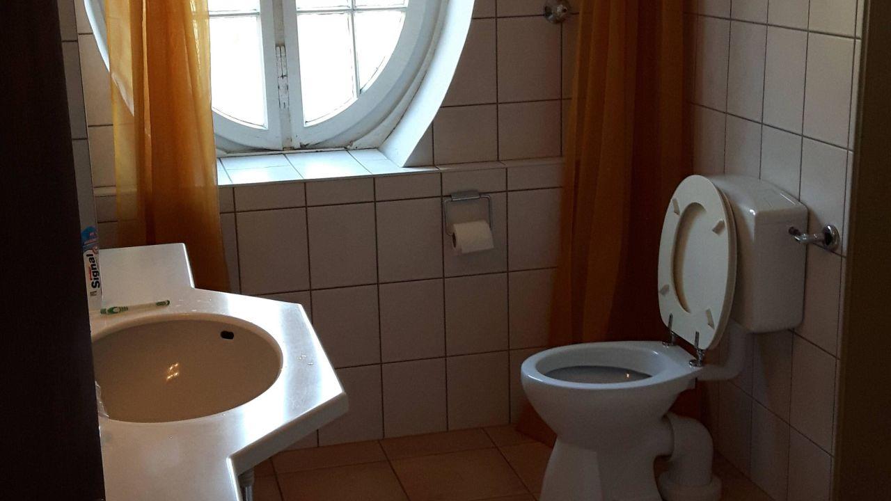 ▷ ideal standard wc test u die besten markenprodukte