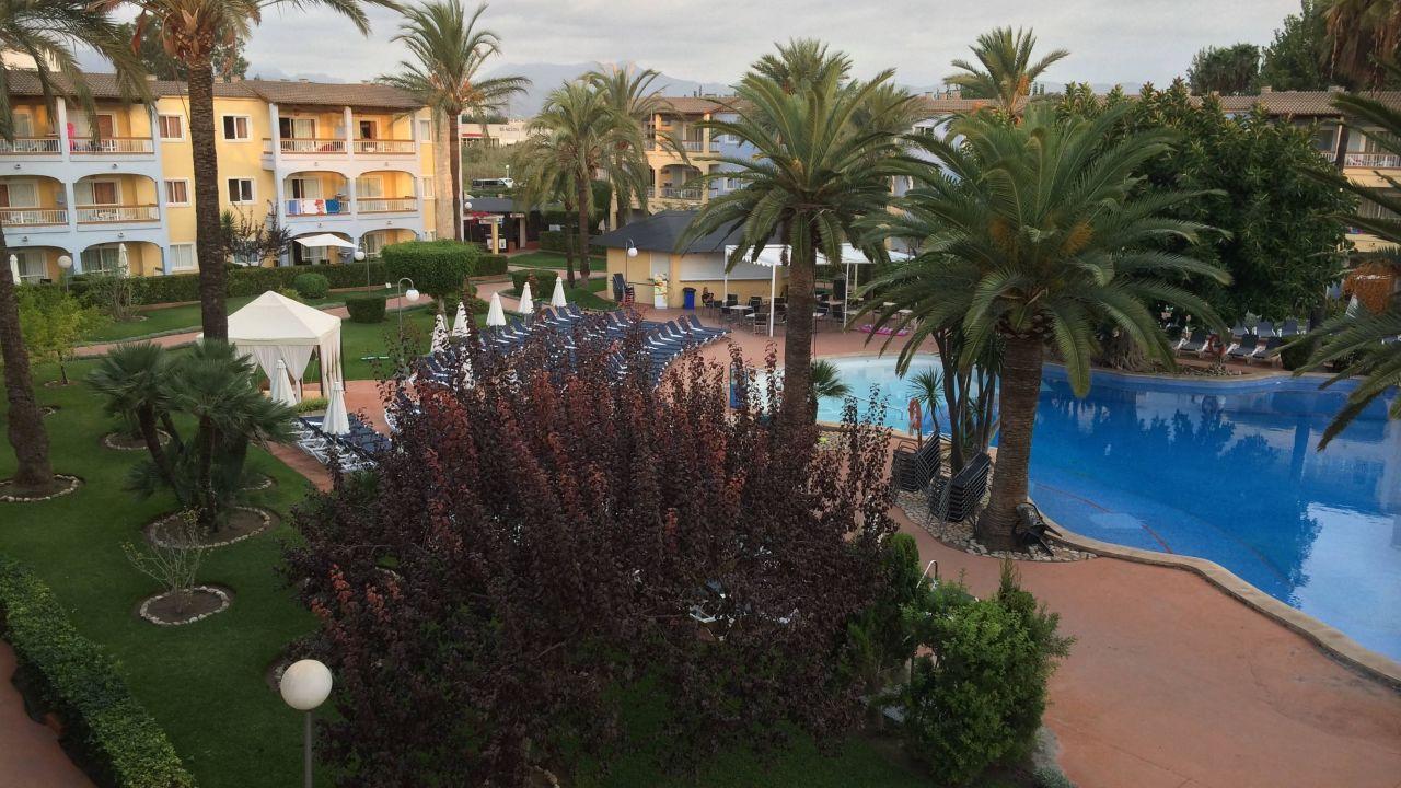 Alcudia garden palm garden beach garden in alcudia for Katzennetz balkon mit hotel palm garden alcudia