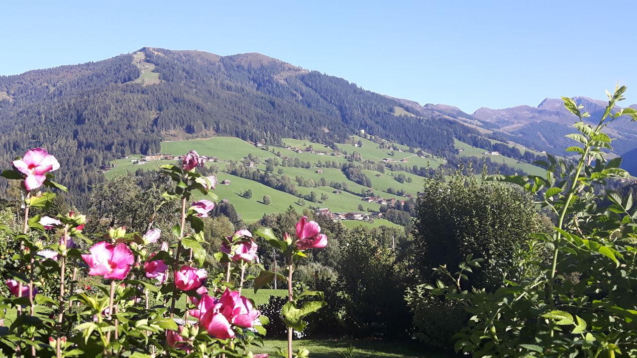 Alpbach - Appartements Moahof Zuhaus | Ferienwohnung