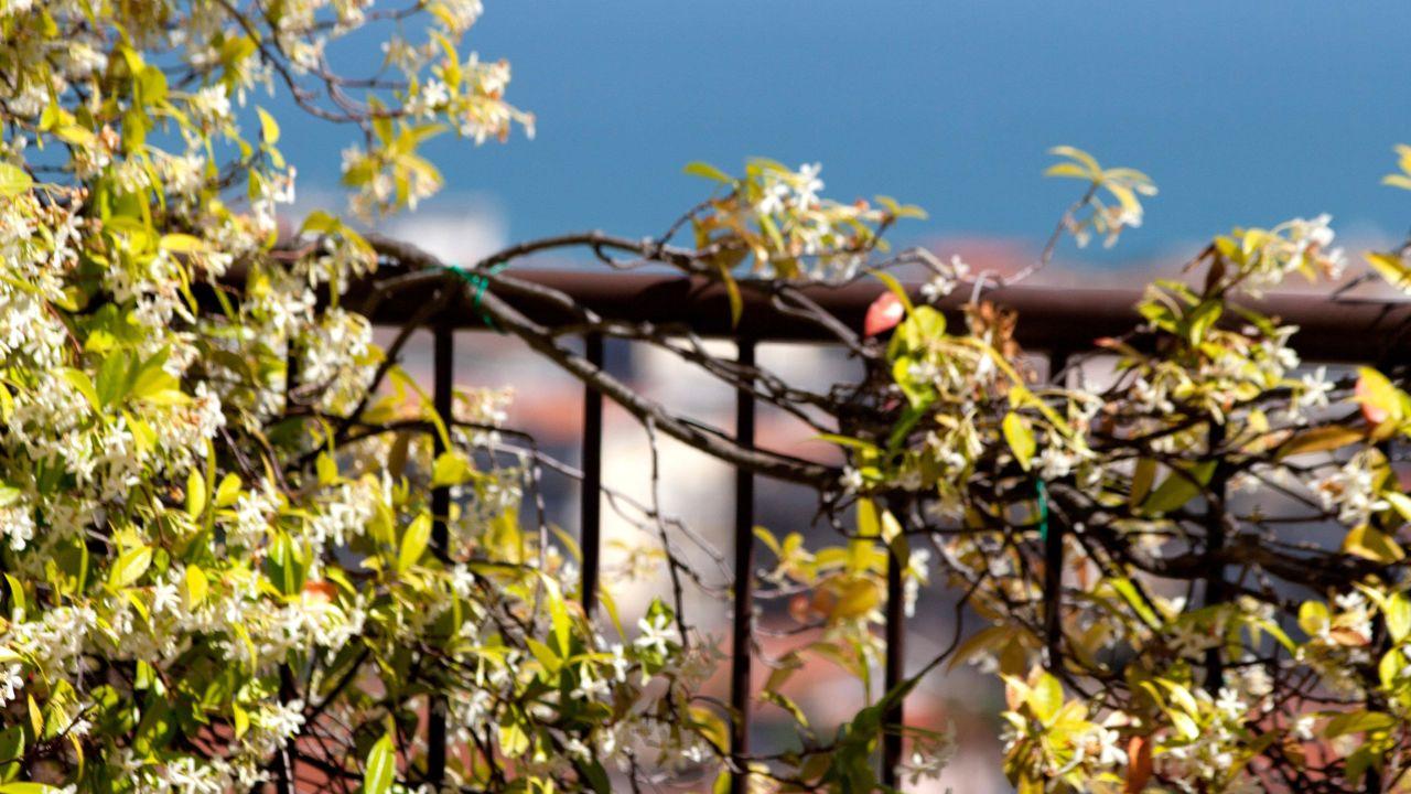 Villa Maria Hotel Spa Francavilla Al Mare Ch Italien
