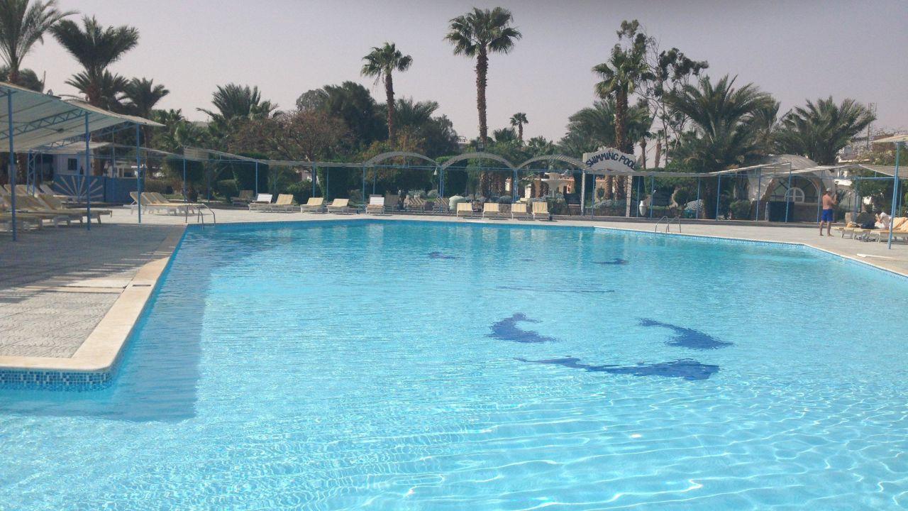 Das El Samaka Beach ist ein 3* Hotel und kann jetzt ab 269€ gebucht werden
