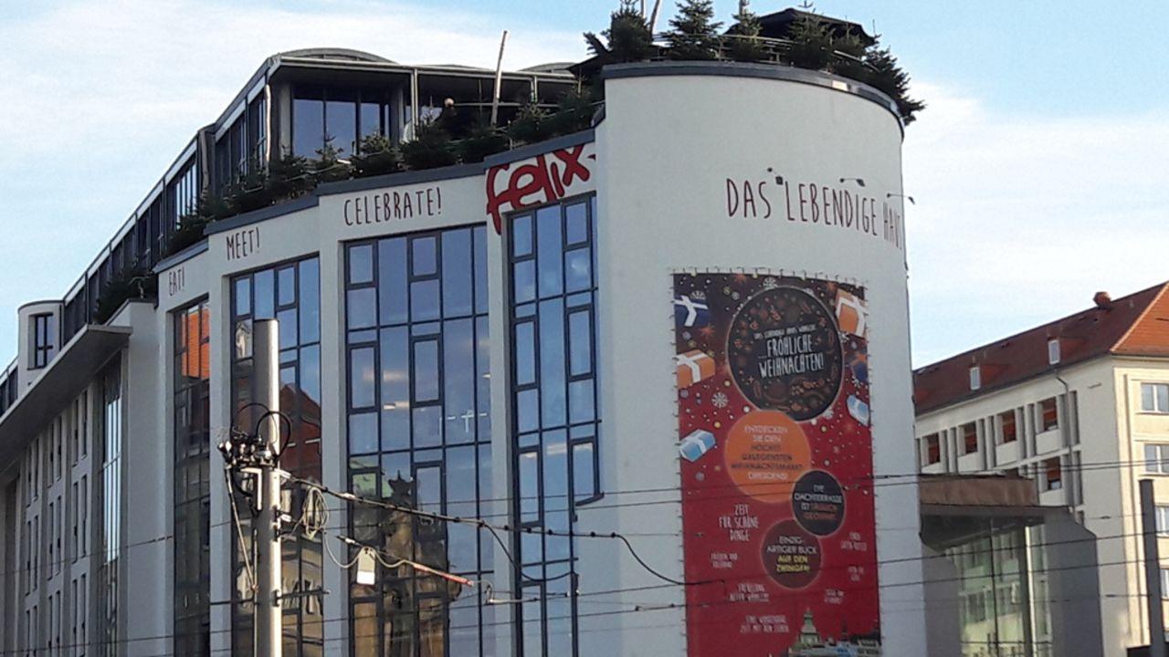 das lebendige haus am zwinger design aparthotel dresden holidaycheck sachsen deutschland. Black Bedroom Furniture Sets. Home Design Ideas
