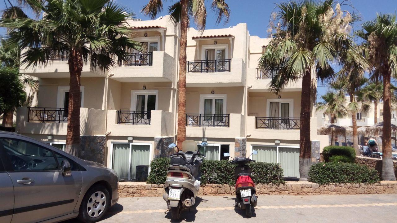 Aeolos Beach Malia Holidaycheck Kreta Griechenland