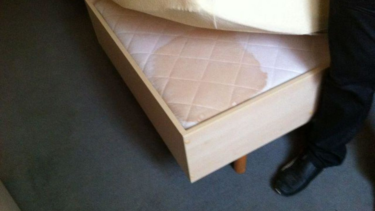 hotel central neu isenburg holidaycheck hessen. Black Bedroom Furniture Sets. Home Design Ideas