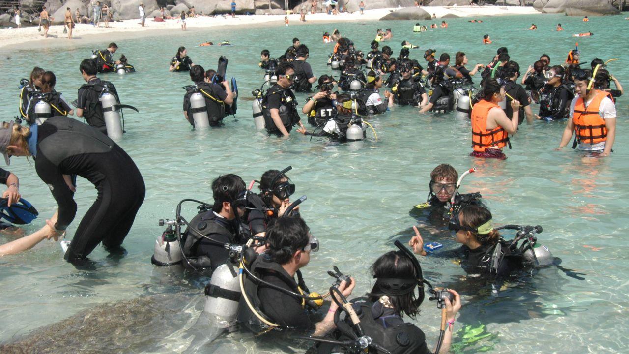 Hotel nangyuan island dive resort in ko nang yuan holidaycheck koh tao thailand - Nangyuan island dive resort tripadvisor ...