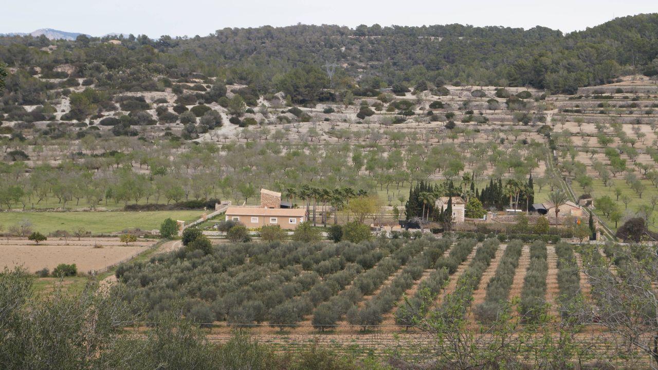 Hotel Sa Cabaneta Mallorca