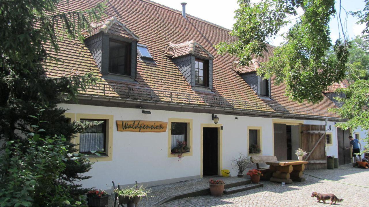 Waldpension Ullmann (Moritzburg) • HolidayCheck (Sachsen | Deutschland)