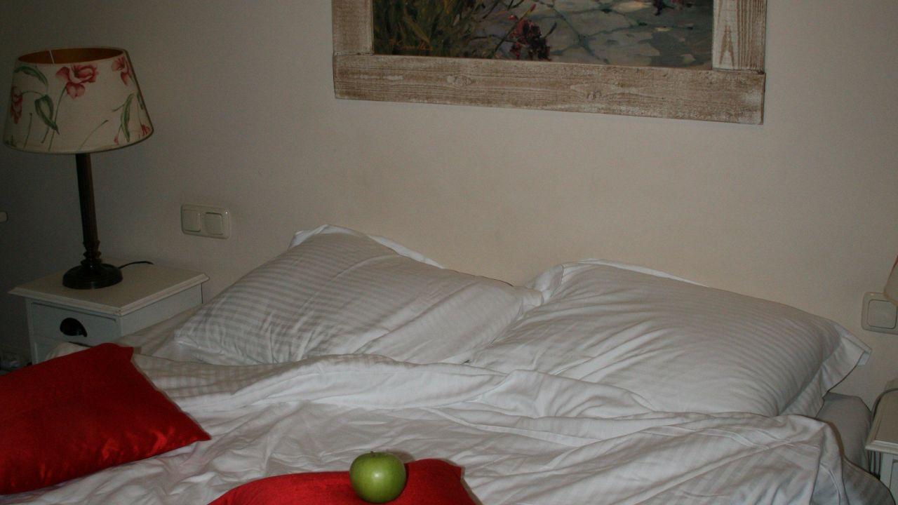 Alp de Veenen Hotel - room photo 8726376