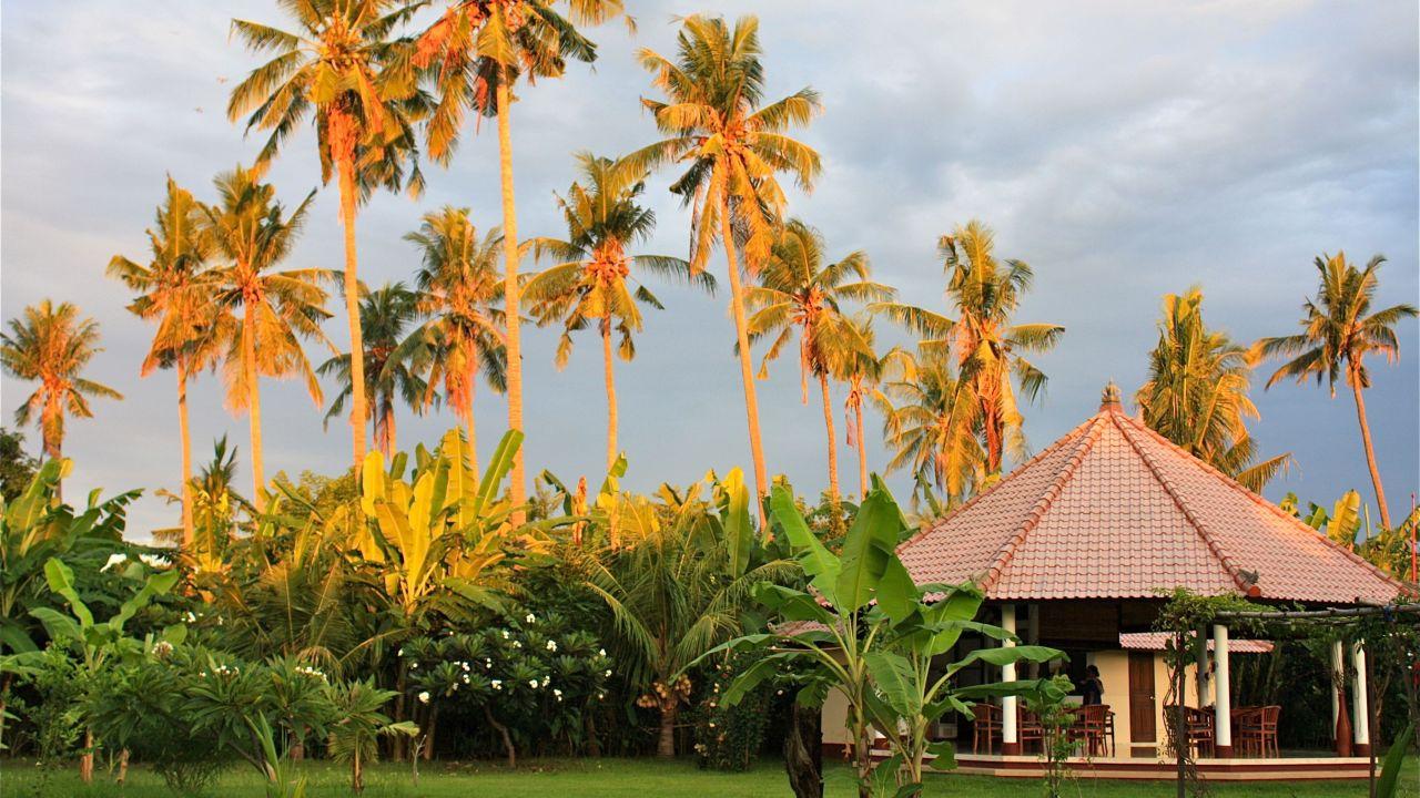 Hotel Bali Oase Resort Pemuteran Holidaycheck Bali Indonesien