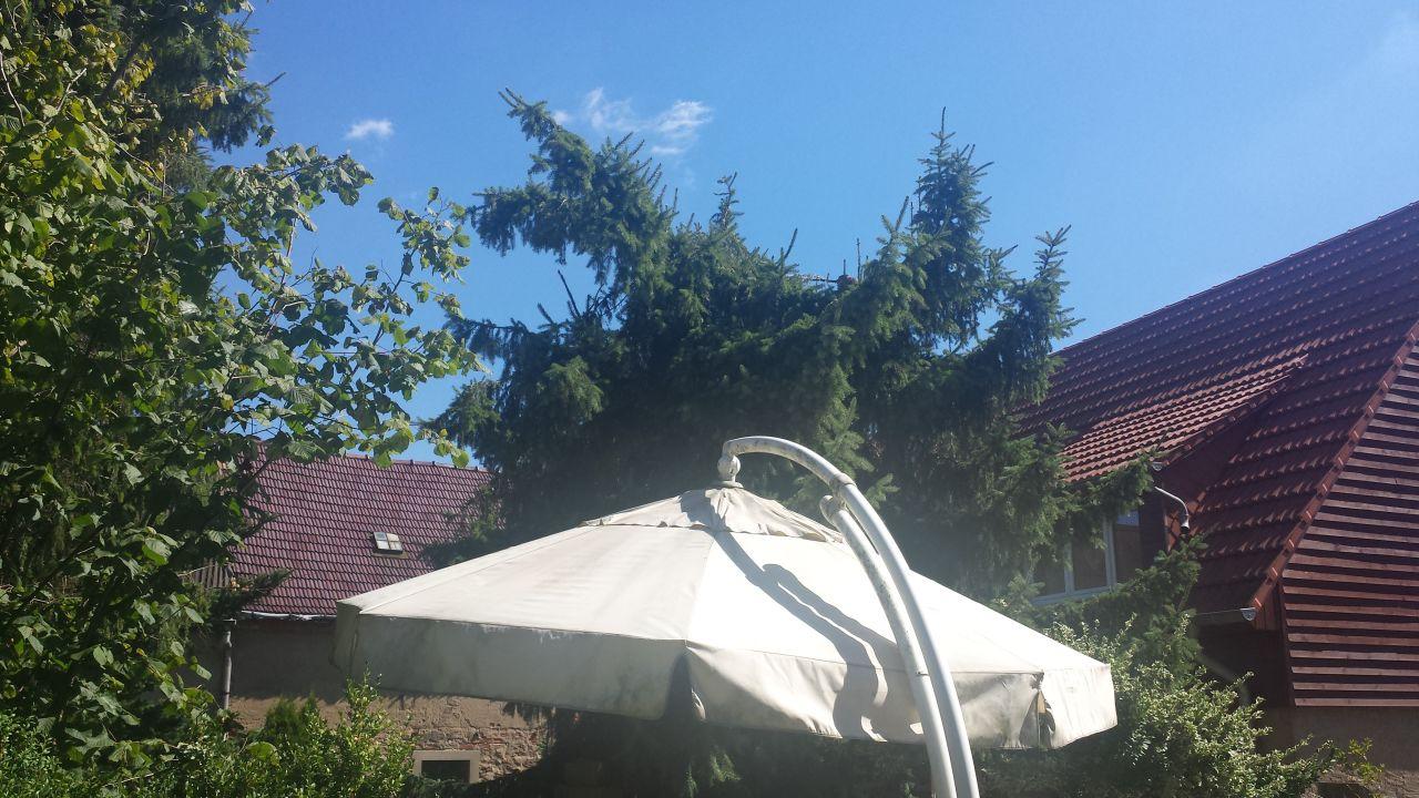 Pension Bräuer (Moritzburg) • HolidayCheck (Sachsen | Deutschland)