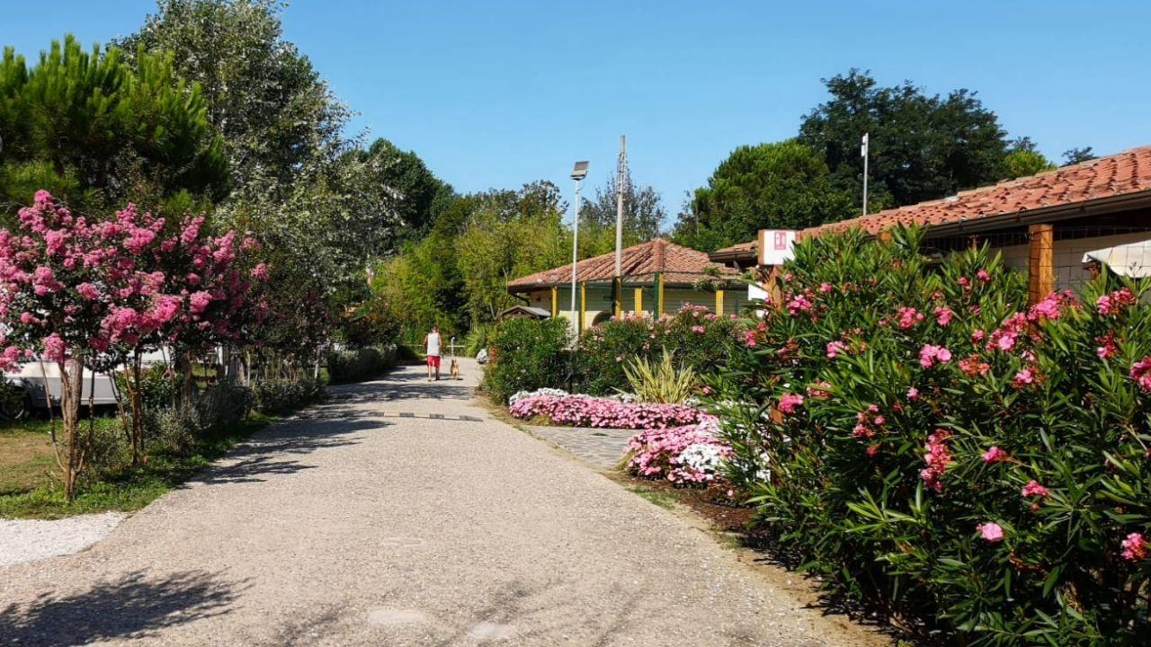 Ristorante Bagno Italia Marina Di Pisa : Villaggio camping paradiso viareggio u2022 holidaycheck toskana