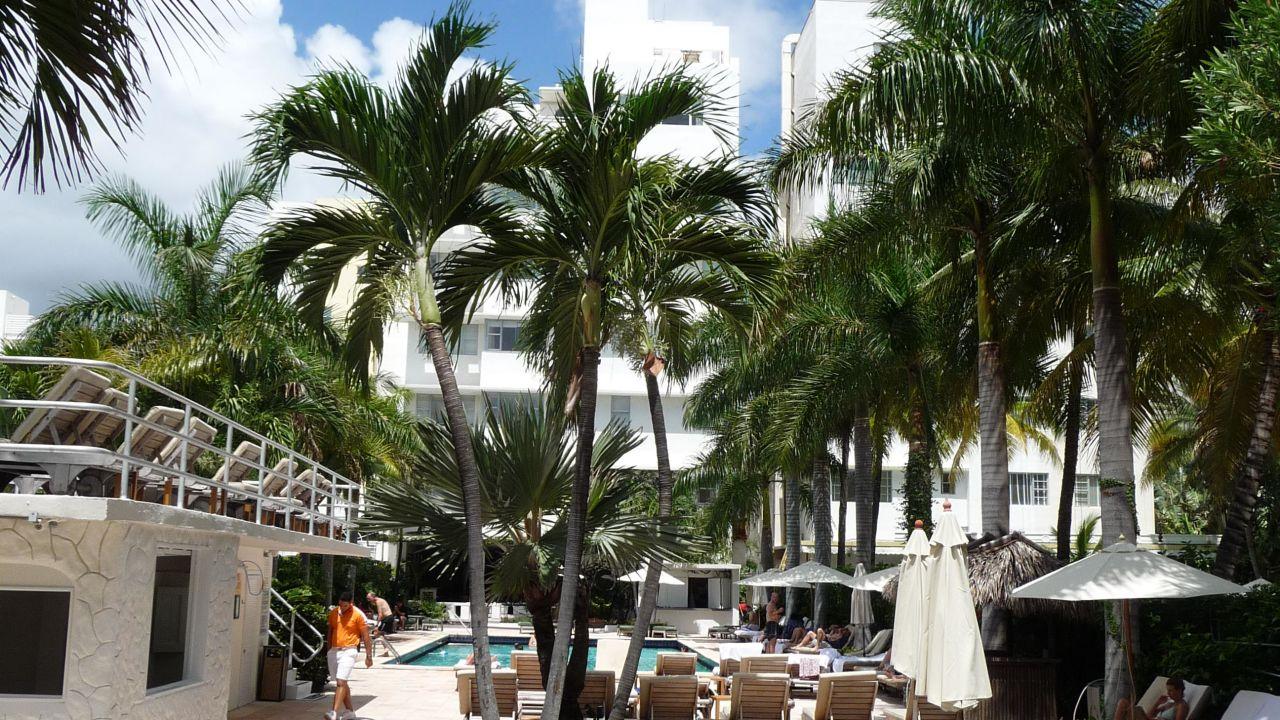 South Seas Hotel Miami Bewertungen