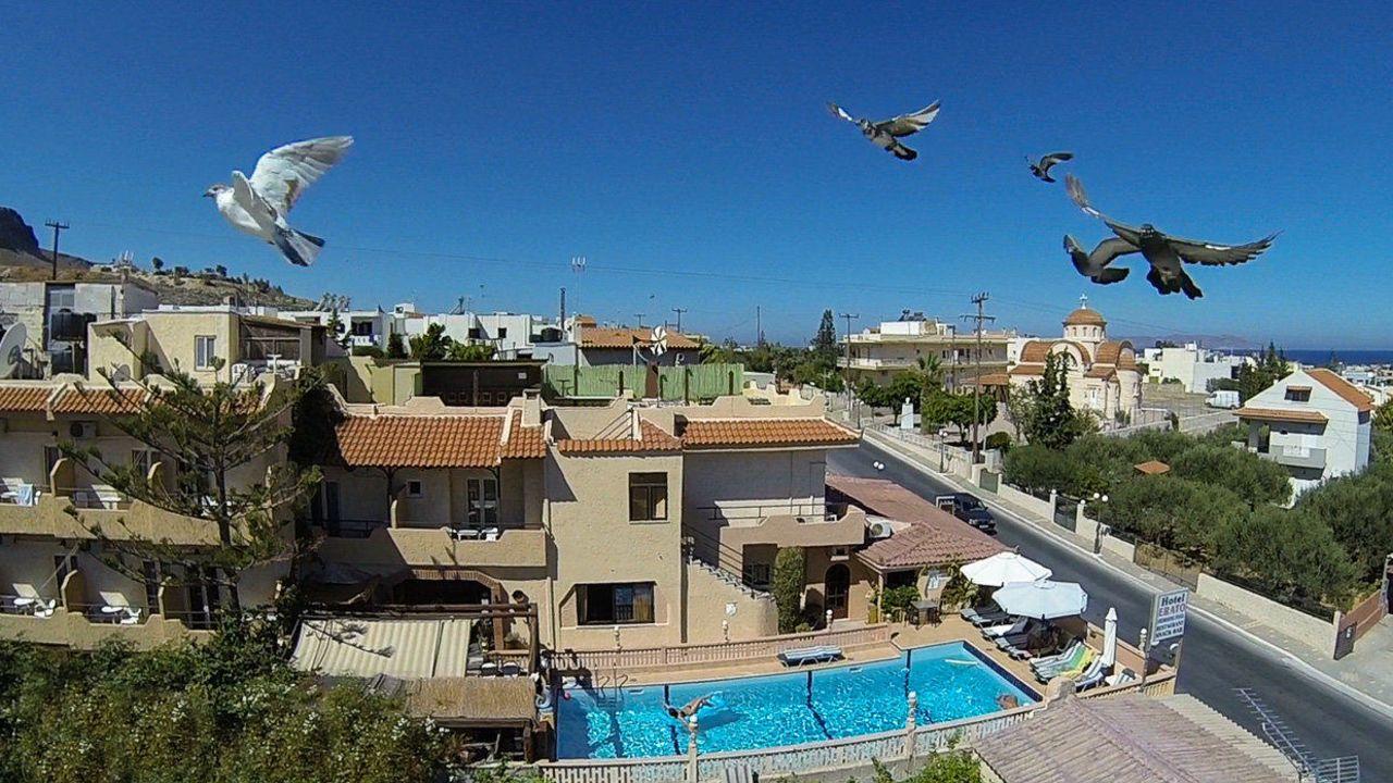 Hotel Erato Kreta Bewertung