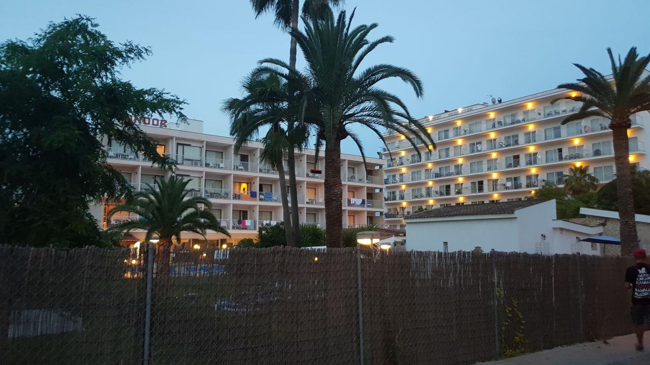 Hotel Condor Playa De Palma
