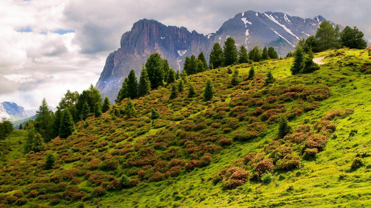 Goldknopf alpine lifestyle hotel bellavista for Lifestyle hotel sudtirol