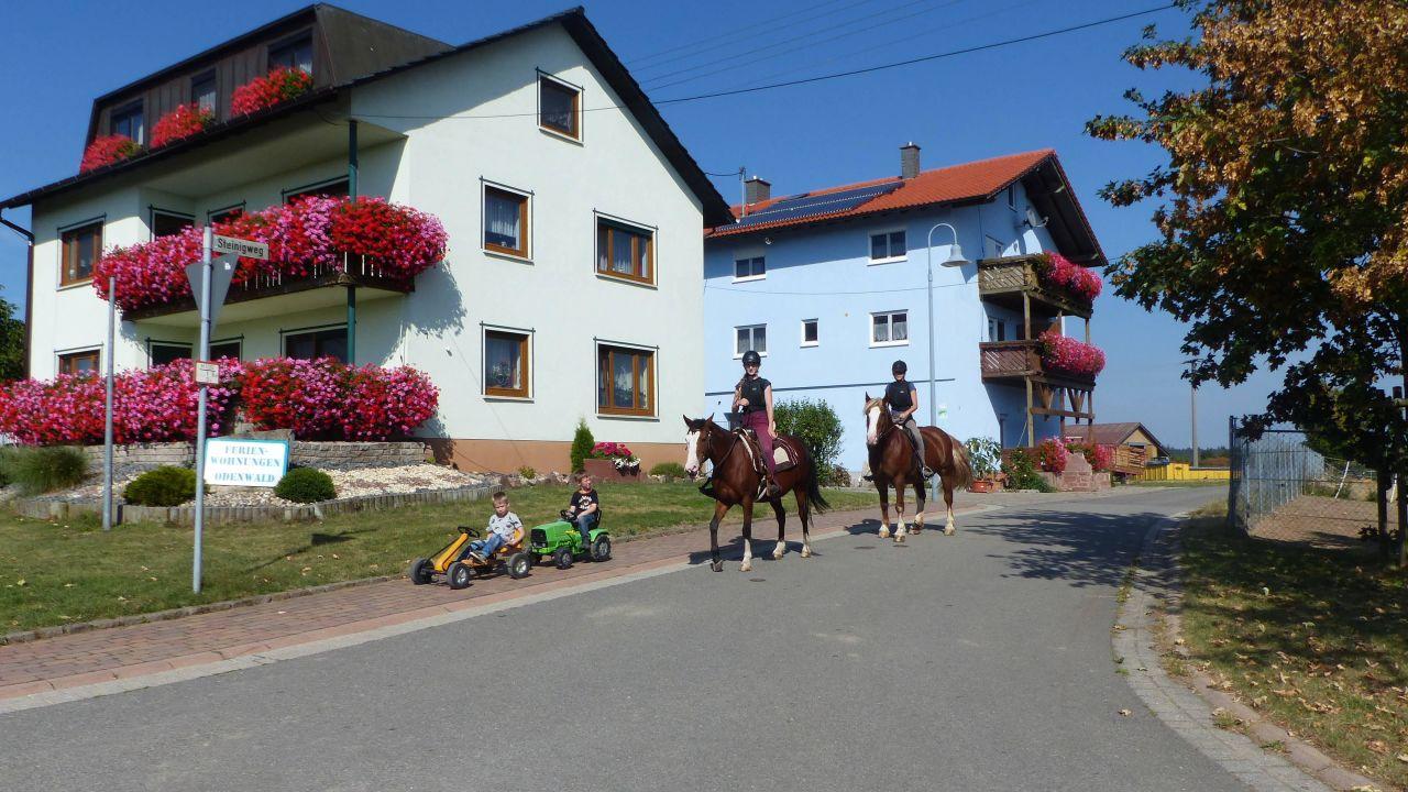Hotels In Hardheim Deutschland