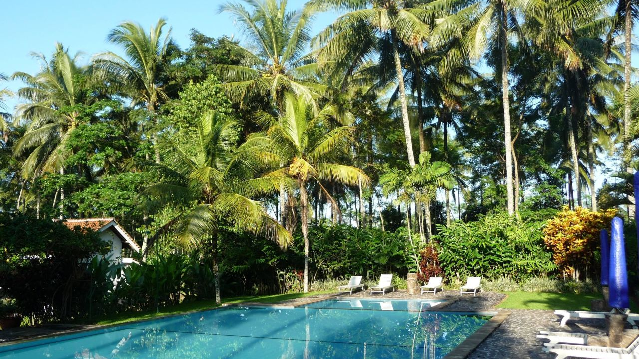 Margo Utomo Hill View Resort  Glenmore   U2022 Holidaycheck  Java