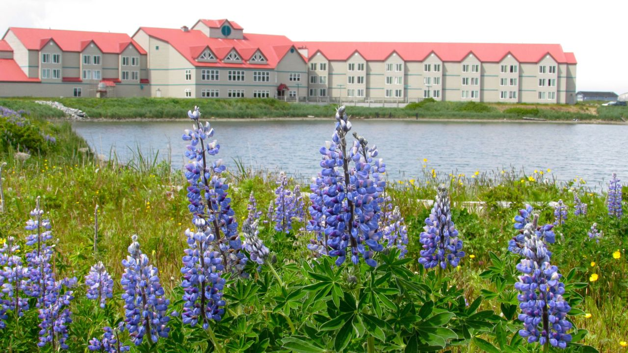 Grand aleutian hotel in dutch harbor - Ff1be806 30f3 37dd 8bab 1171a73ef153