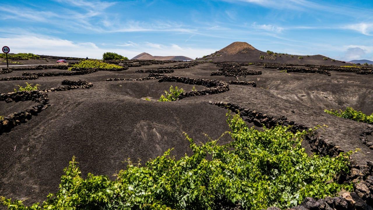Weinanbaugebiet La Geria, Lanzarote © Joachim Negwe
