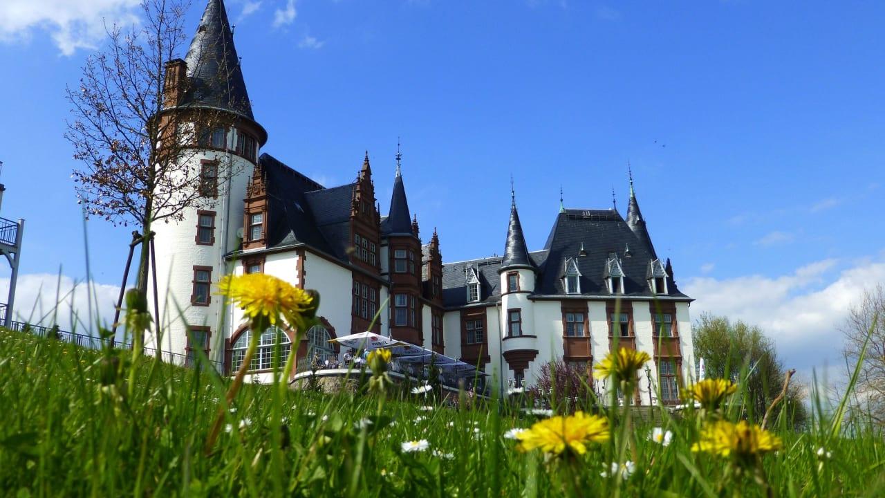 Schlosshotel & Orangerie Klink