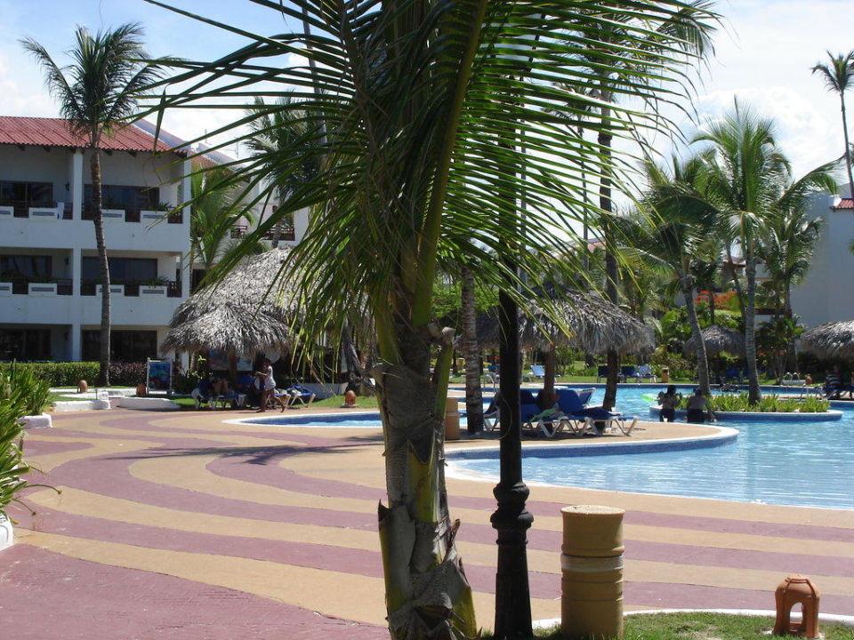 Defekte Badezimmertür im 1. Zimmer Occidental Grand Punta Cana Resort