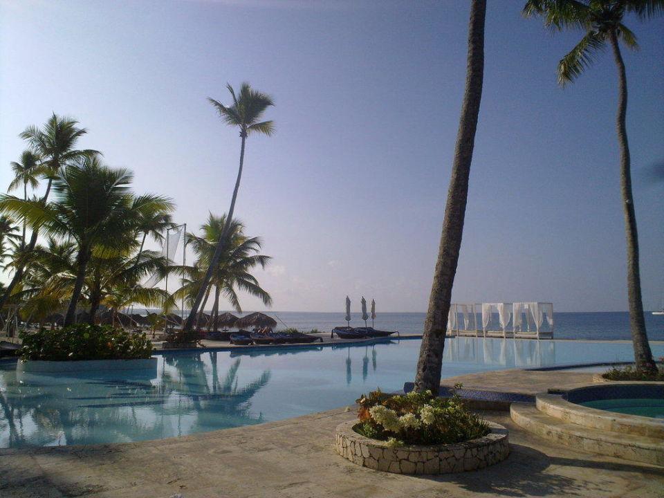 bild f cherpalme zu hotel viva wyndham dominicus beach. Black Bedroom Furniture Sets. Home Design Ideas