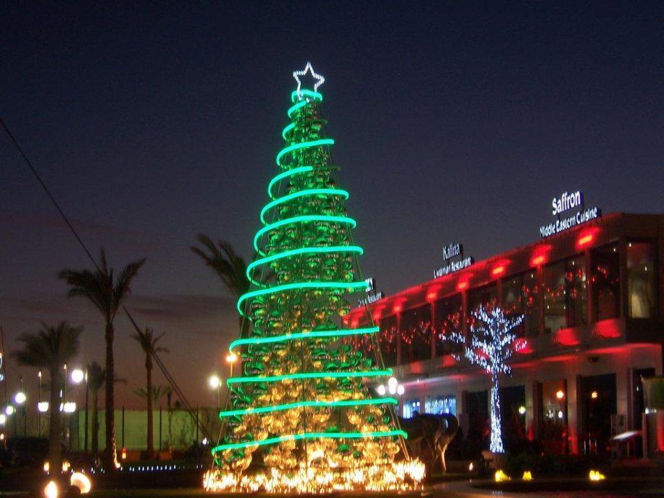 Weihnachtsessen Island.Weihnachten In ägypten Island View Resort Shark Bay