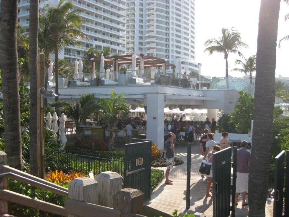 Am Pool Hotel Fontainebleau Miami Beach