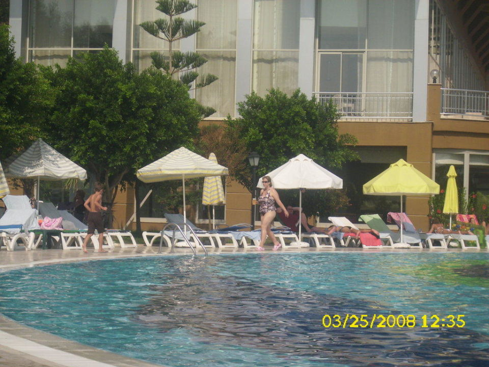 Liegen am Pool Hotel Terrace Beach Resort