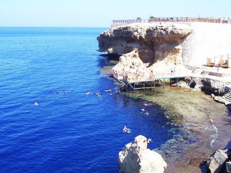 Holidaycheck Grand Hotel Sharm El Sheikh