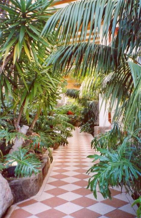 Durchgang vom Pool zur Lobby (genial...) Corallium Beach by Lopesan Hotels
