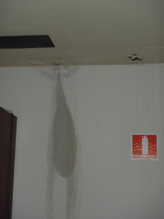 Turbo Wasserflecken Wand