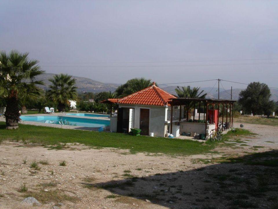 Pool mit Poolbar Hotel Zeus