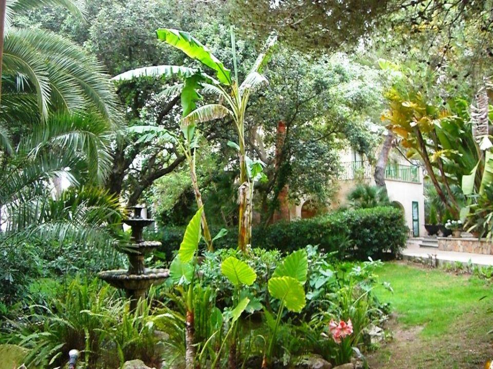 Hotel Lago Garden Mallorca Holidaycheck