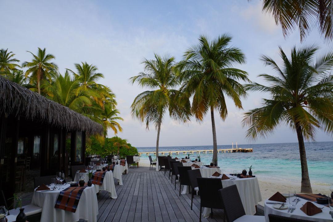 Blick auf die Insel von den Bungalows Hotel Mirihi Island Resort