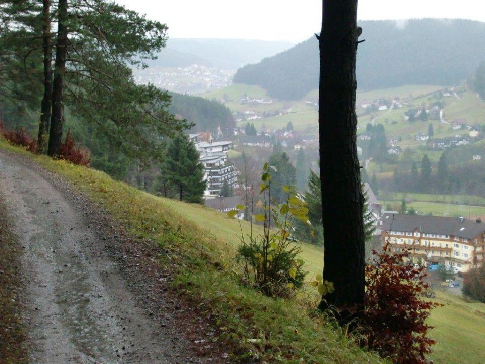 Ausblick auf das Tonbachtal Hotel Traube Tonbach