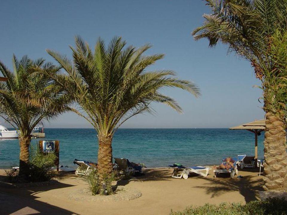 Palm Beach Resort / Hurghada Hotel Palm Beach Resort