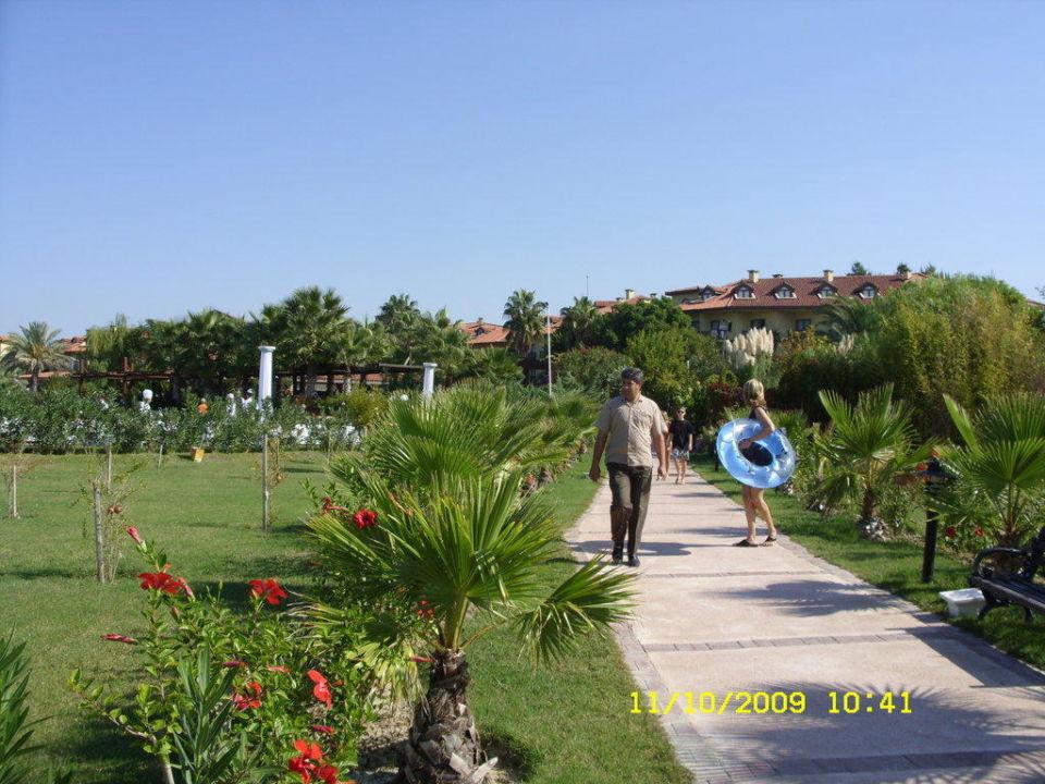 Weg zum Strand Alba Resort Hotel