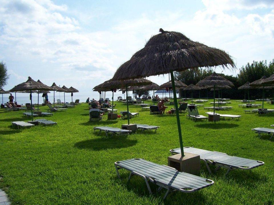 Liegewiese Hotel Apollo Beach