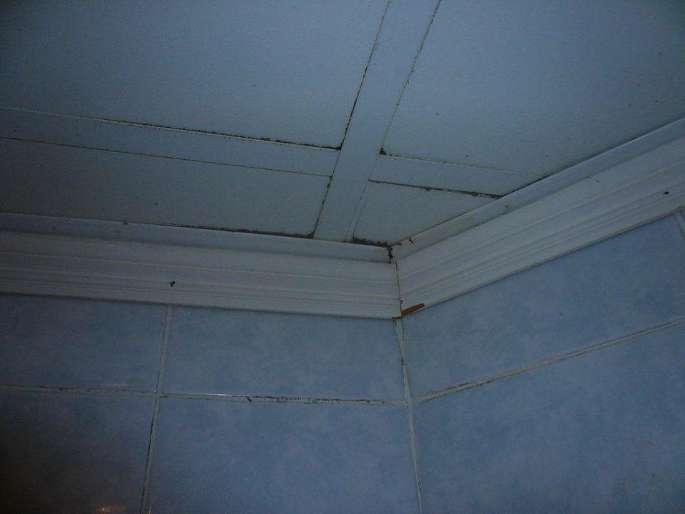 Decke des Badezimmers Royal Albatros Moderna