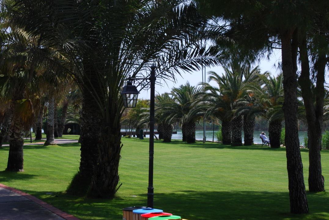 englischer rasen gloria golf resort belek holidaycheck t rkische riviera t rkei. Black Bedroom Furniture Sets. Home Design Ideas