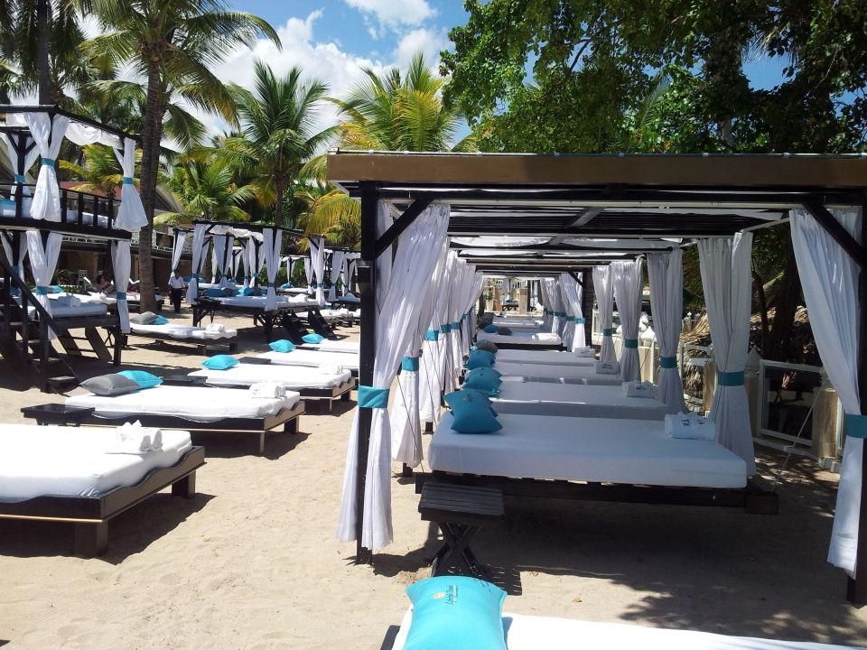 Lifestyle Beach  Cofresi Palm Beach & Spa Resort