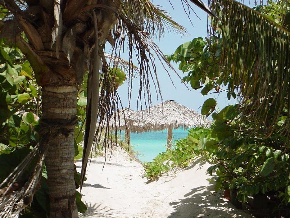 Der Weg zum Beach Sol Sirenas Coral