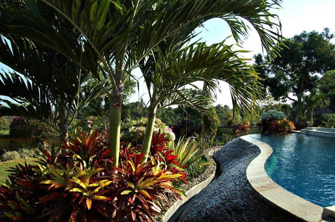 Pool Hotel Puri Mangga