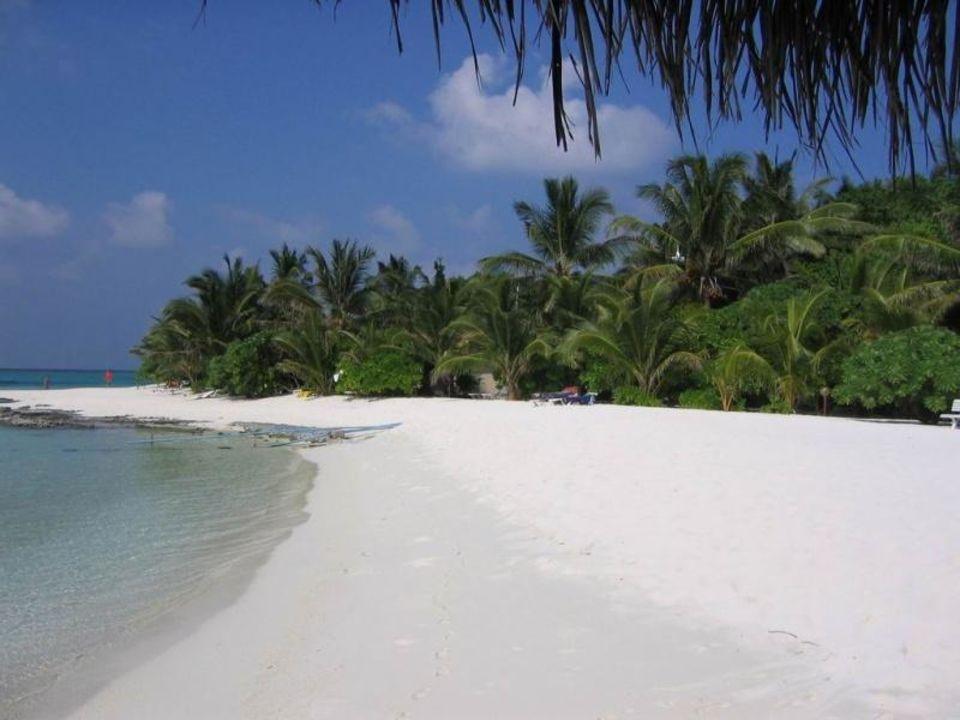 Traumstrand Summer Island Summer Island Maldives